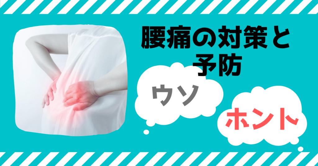 腰痛 対策 予防